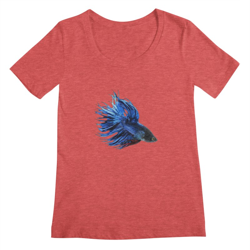 Royal Blue and Red Betta Fish Crowntail Male Swimming Beautiful Colors Women's Scoopneck by Fringe Walkers Shirts n Prints