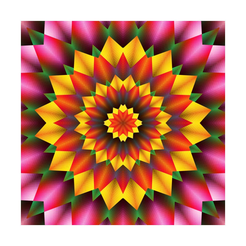 Abstract colorful flowers Mandala None  by fruityshapes's Shop