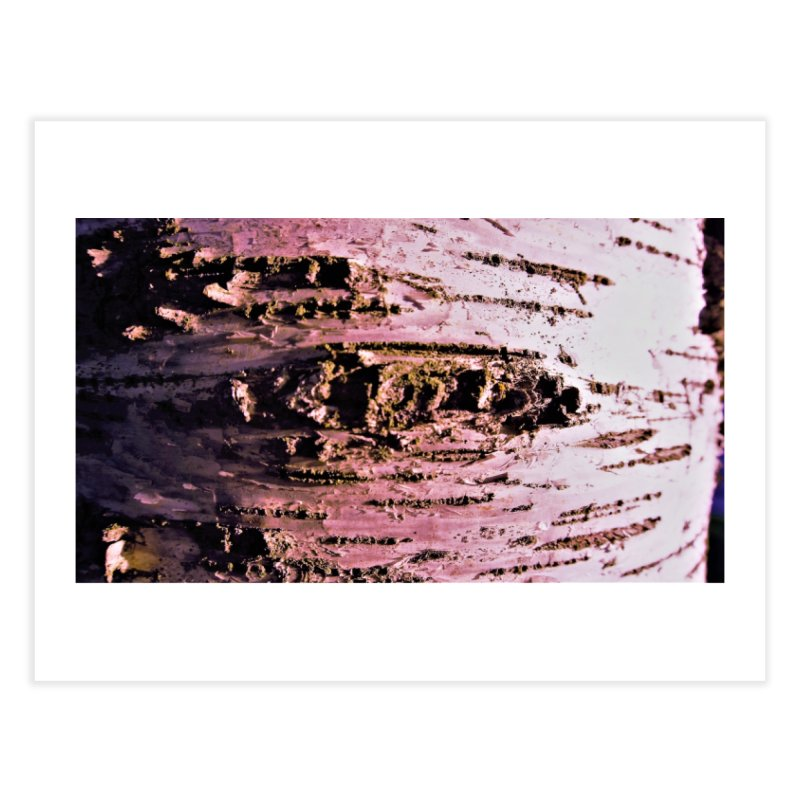 Birch in white,pink and brown Home Fine Art Print by frydenlundphoto's Artist Shop