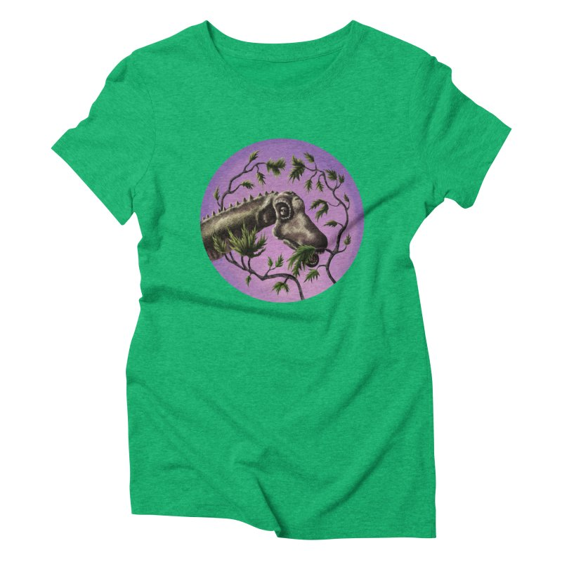Diplodocus Women's Triblend T-shirt by funnyfuse's Artist Shop