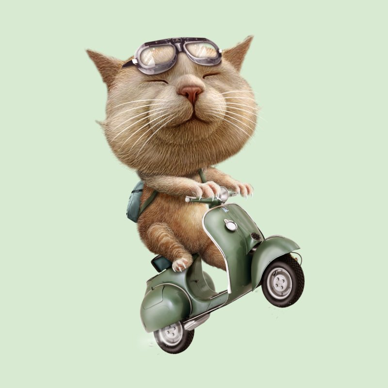 RUNAWAY CATM ON SCOOTER   by gallerianarniaz's Artist Shop