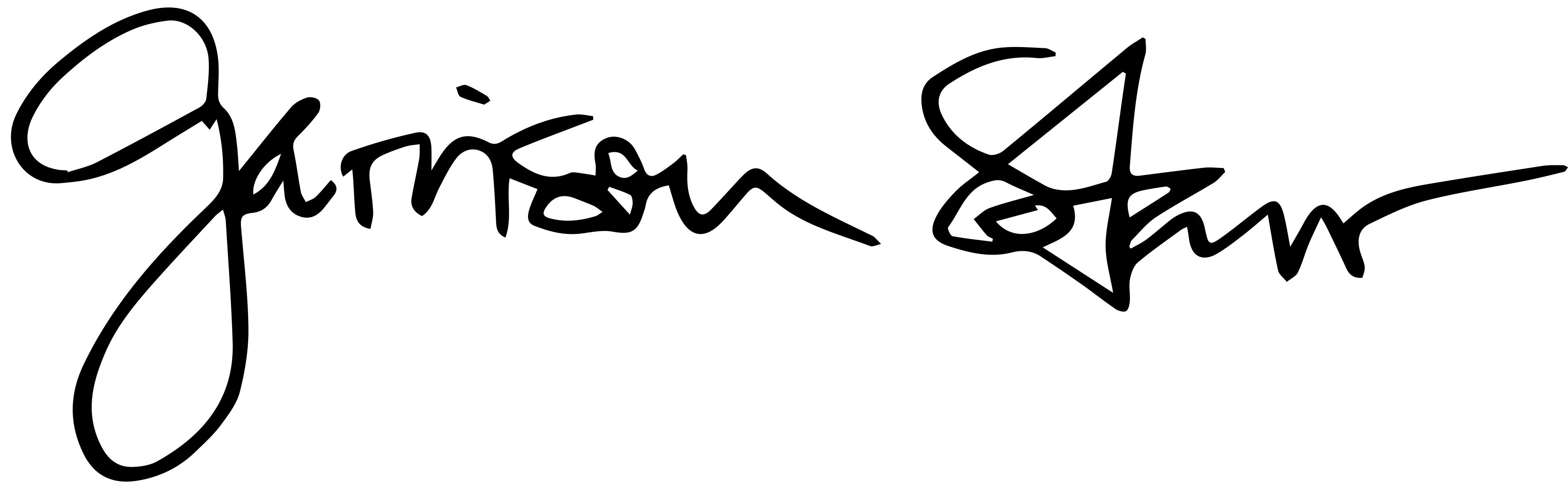 Garrison Starr's Artist Shop Logo