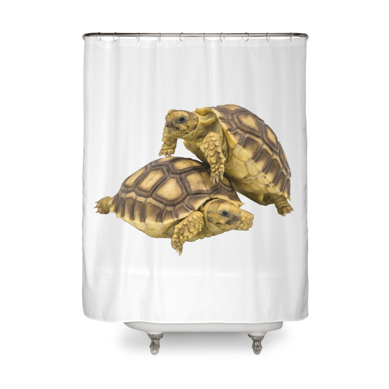African Spurred Tortoises Home Shower Curtain by Gary Mc Alea Photography's Artist Shop