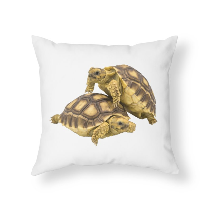 African Spurred Tortoises Home Throw Pillow by Gary Mc Alea Photography's Artist Shop
