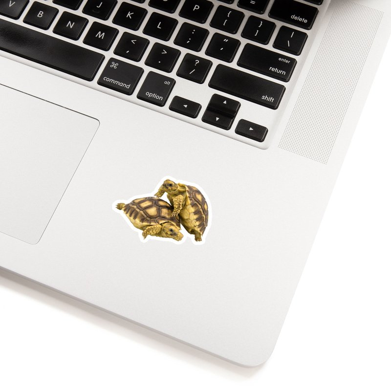 African Spurred Tortoises Accessories Sticker by Gary Mc Alea Photography's Artist Shop