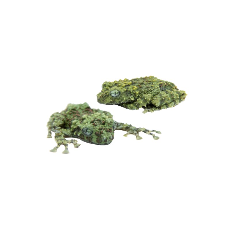 Mossy Frogs Home Rug by Gary Mc Alea Photography's Artist Shop