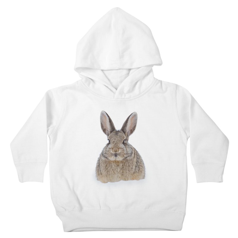 Snow Bunny Kids Toddler Pullover Hoody by Gary Mc Alea Photography's Artist Shop