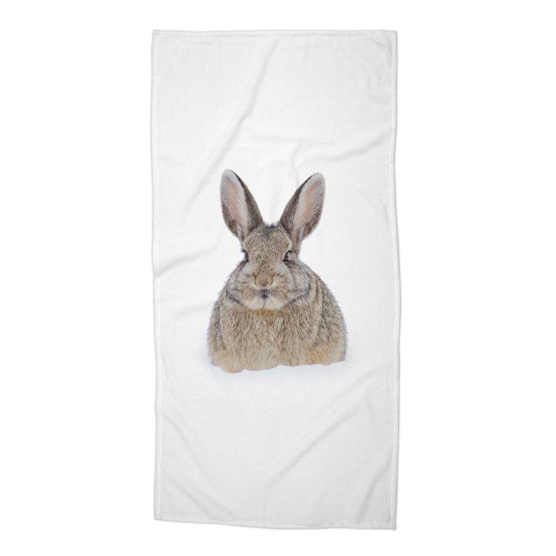 Snow Bunny Accessories Beach Towel by Gary Mc Alea Photography's Artist Shop
