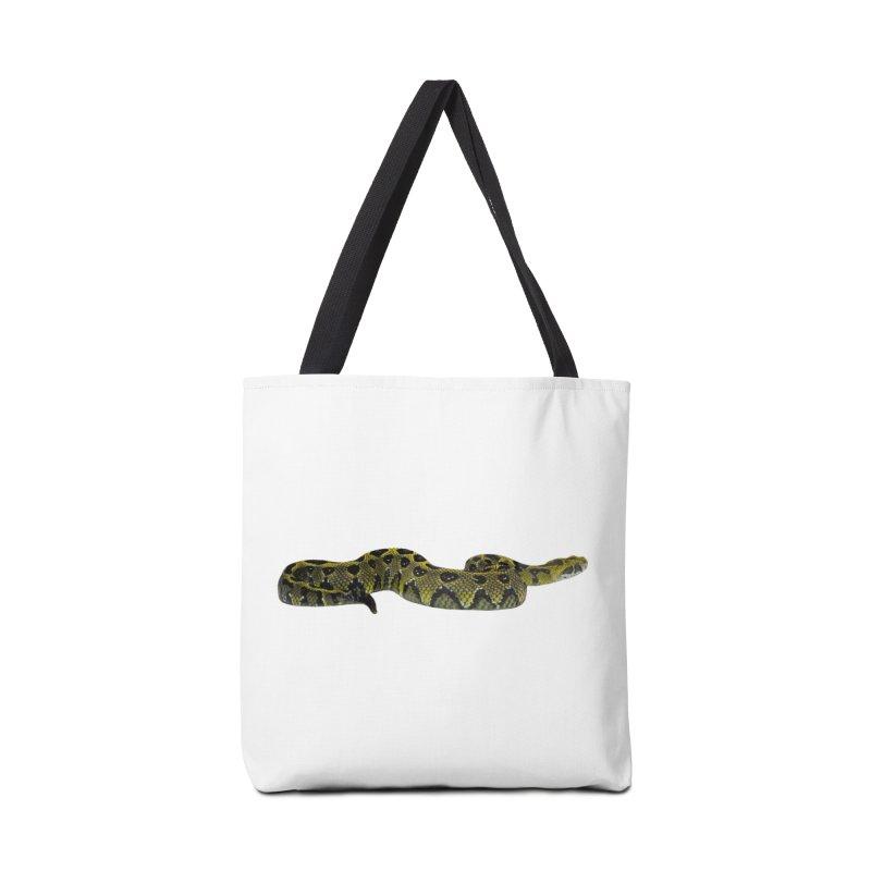 Bitis Parviocula Accessories Bag by Gary Mc Alea Photography's Artist Shop