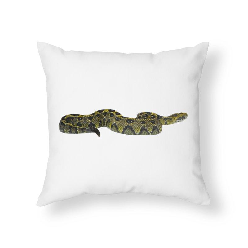Bitis Parviocula Home Throw Pillow by Gary Mc Alea Photography's Artist Shop