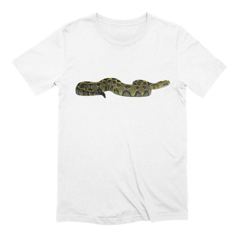 Bitis Parviocula Men's T-Shirt by Gary Mc Alea Photography's Artist Shop