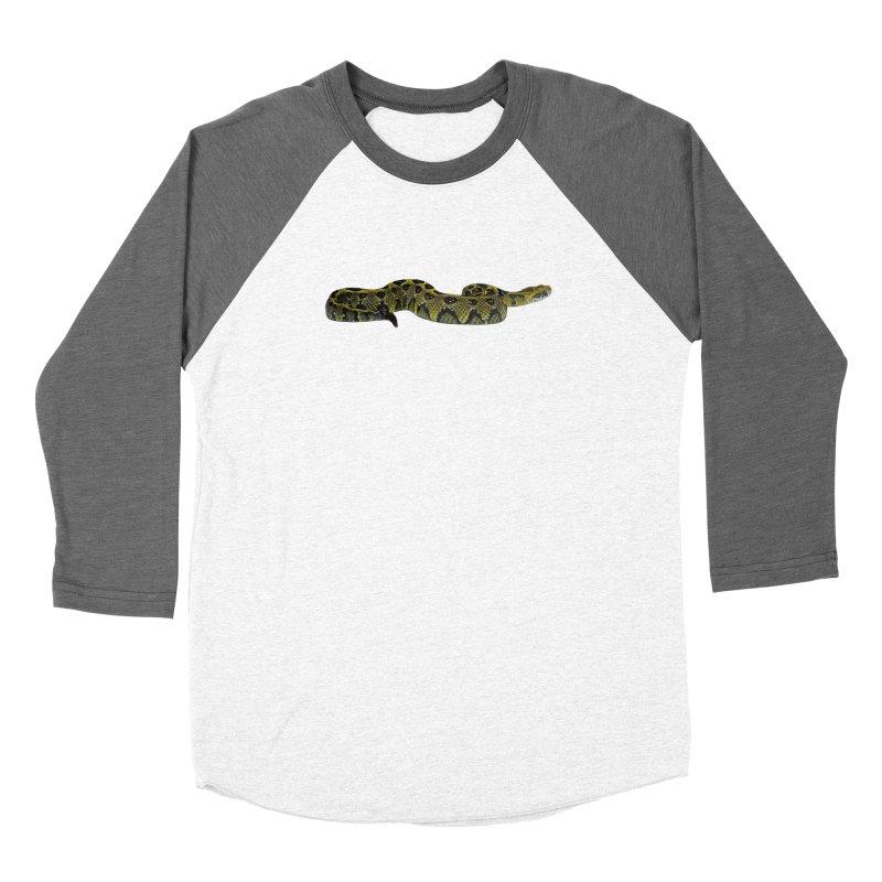 Bitis Parviocula Women's Longsleeve T-Shirt by Gary Mc Alea Photography's Artist Shop