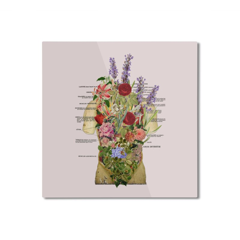 Growth -spring Home Mounted Aluminum Print by gasponce