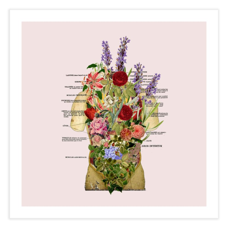Growth -spring Home Fine Art Print by gasponce