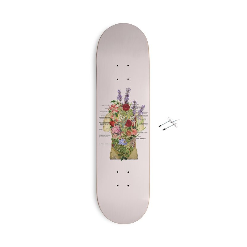 Growth -spring Accessories With Hanging Hardware Skateboard by gasponce