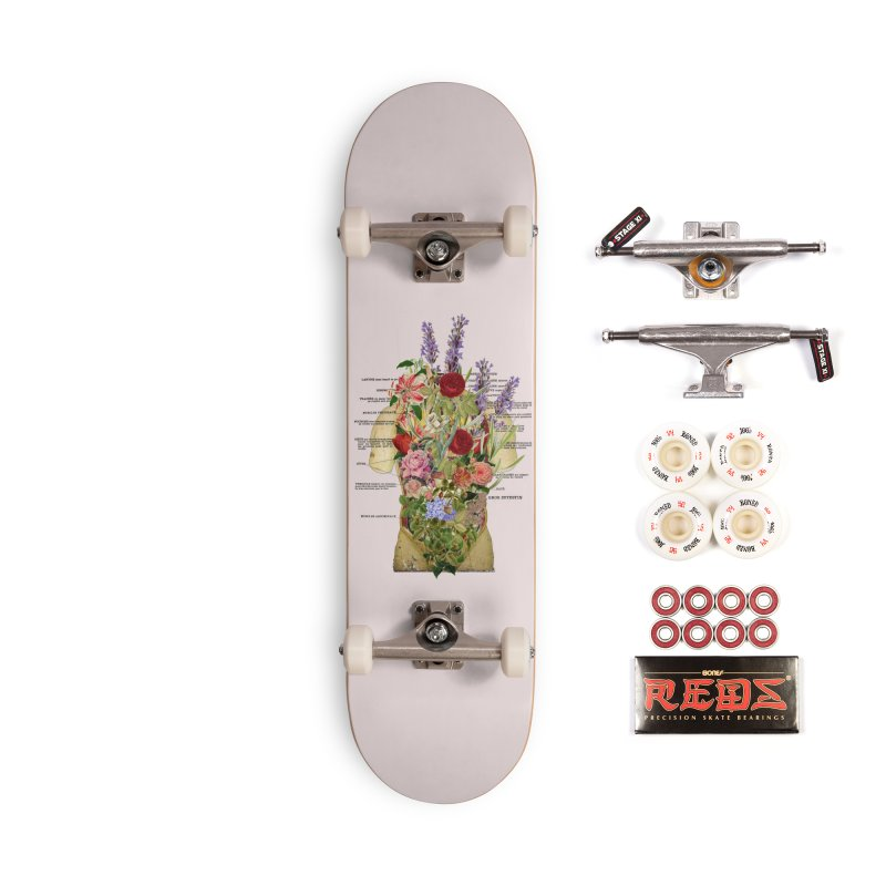 Growth -spring Accessories Skateboard by gasponce