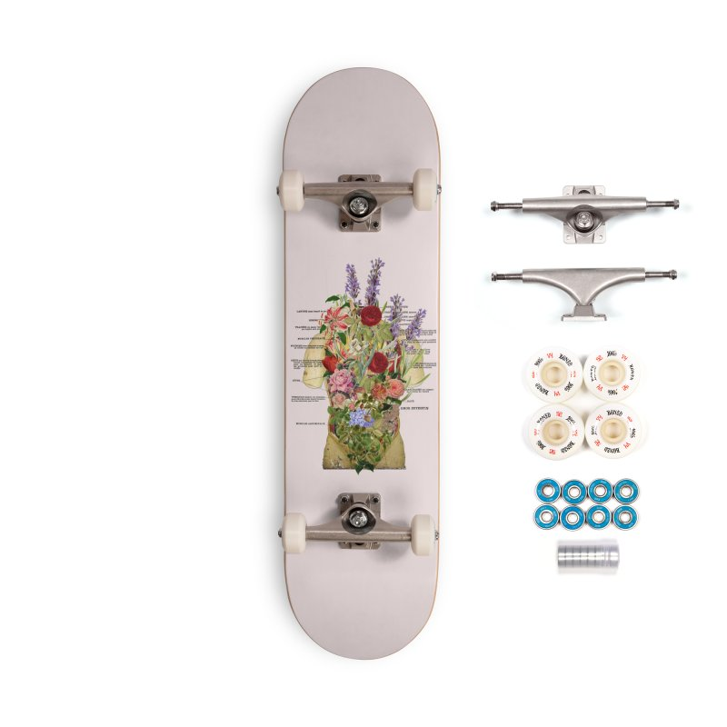 Growth -spring Accessories Complete - Premium Skateboard by gasponce
