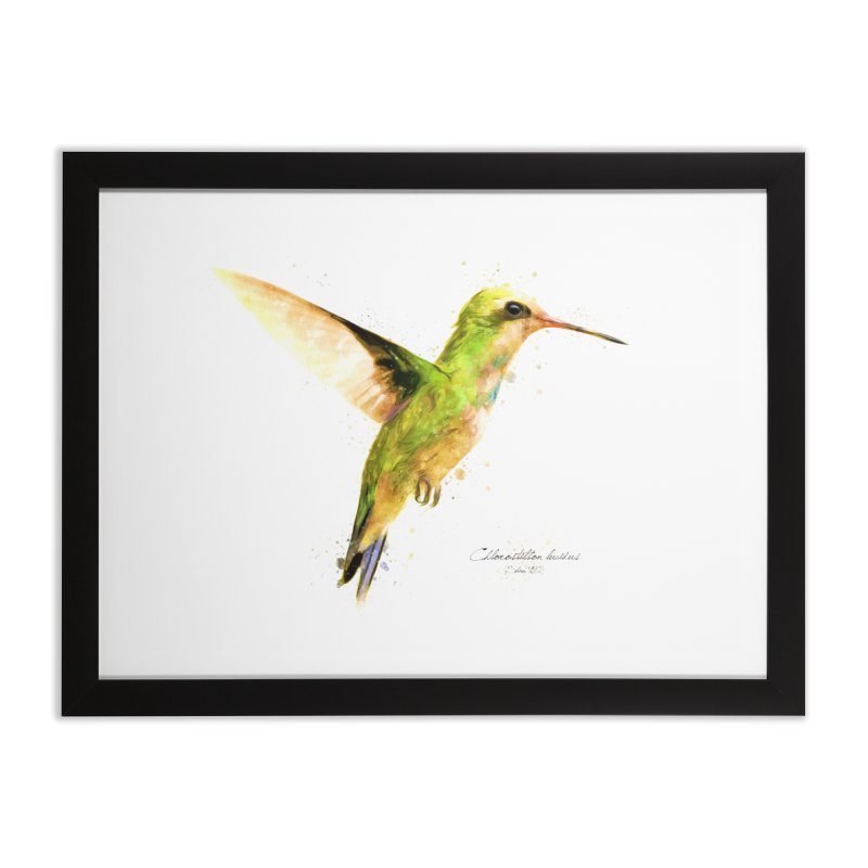 Hummingbird I Home Framed Fine Art Print by Gerónimo Martín Alonso Photography