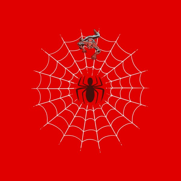 image for A Spiders Web