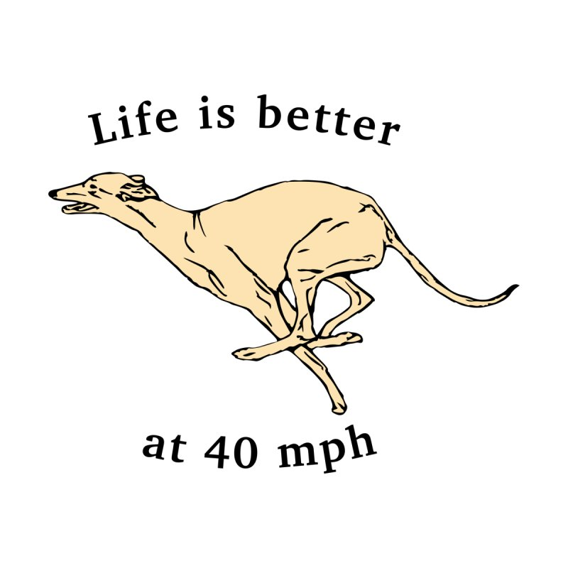 Life is better at 40 mph Kids Pullover Hoody by GPA-MN Merchandise Shop