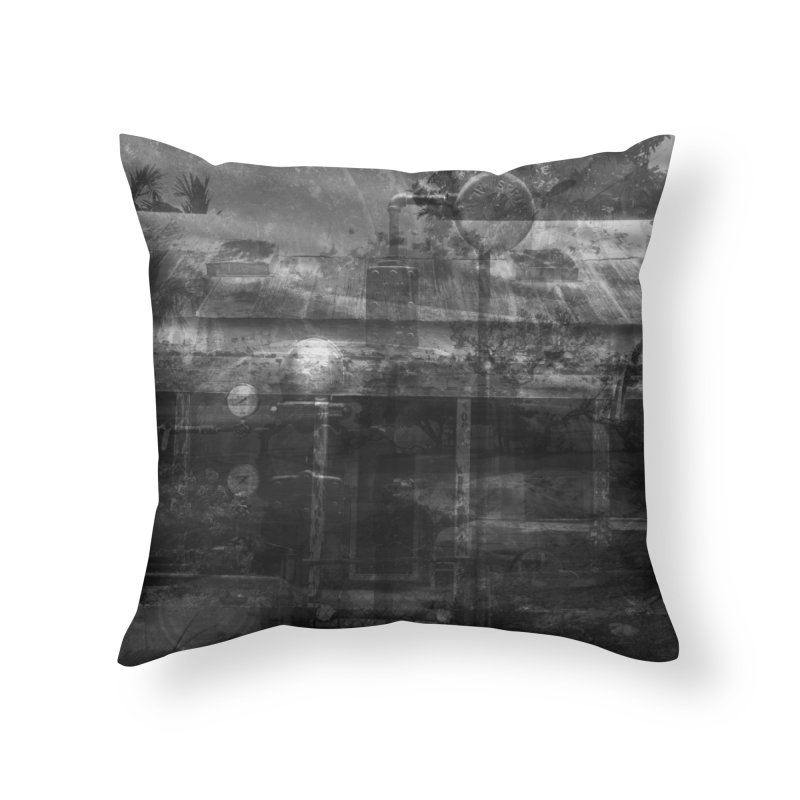Photography for Rasalasad's Thisphoria Home Throw Pillow by Grain of Sound Merchandise