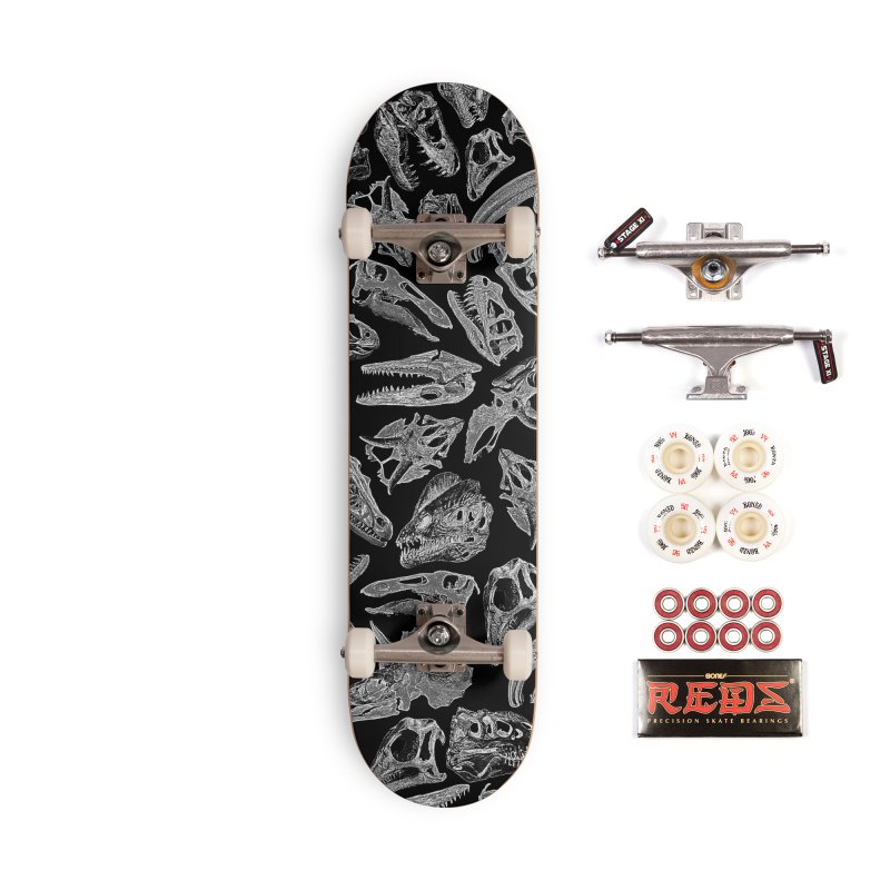 Paleontology Dream II Accessories Complete - Pro Skateboard by Grandio Design Artist Shop