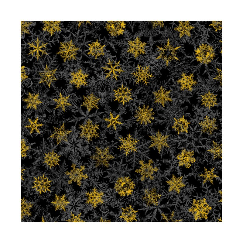 Snowflake Winter Queen Ornate Snow Crystals Pattern Black Accessories Skateboard by Grandio Design Artist Shop