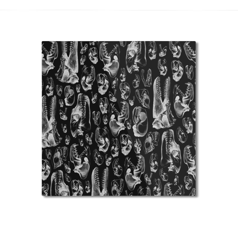 Carnivore B&W II Home Mounted Aluminum Print by Grandio Design Artist Shop
