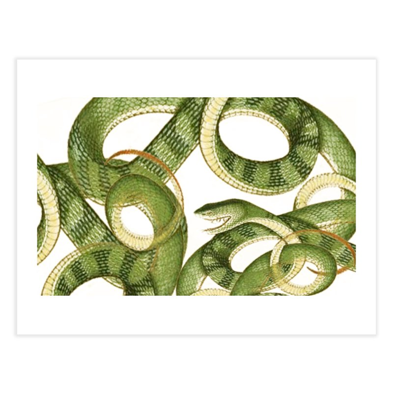 Green Snake Tangle Home Fine Art Print by Green Grackle Studio