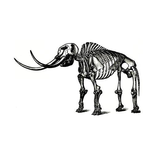 Natural-History