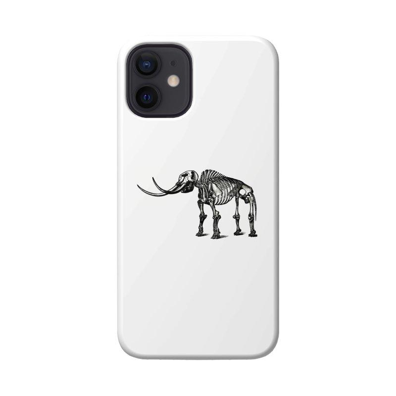 Mammoth Skleleton Accessories Phone Case by Green Grackle Studio