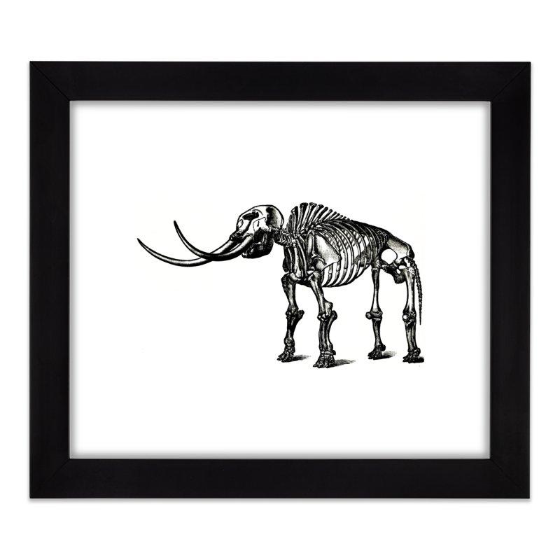 Mammoth Skleleton Home Framed Fine Art Print by Green Grackle Studio