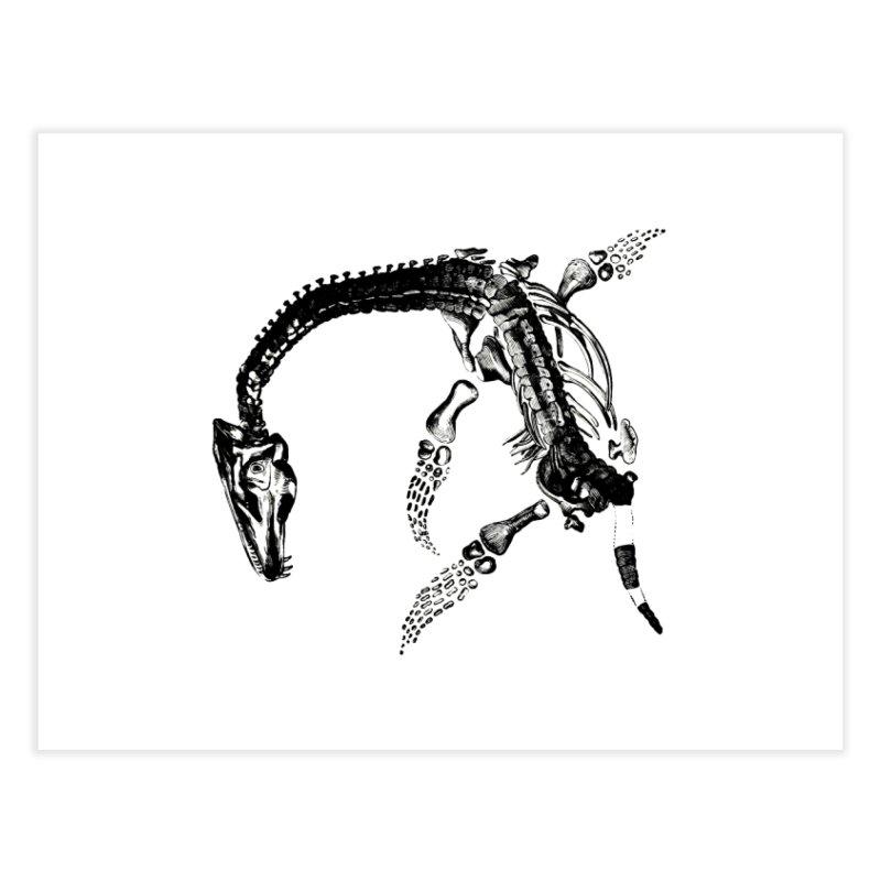 Plesiosaur Skeleton Home Fine Art Print by Green Grackle Studio