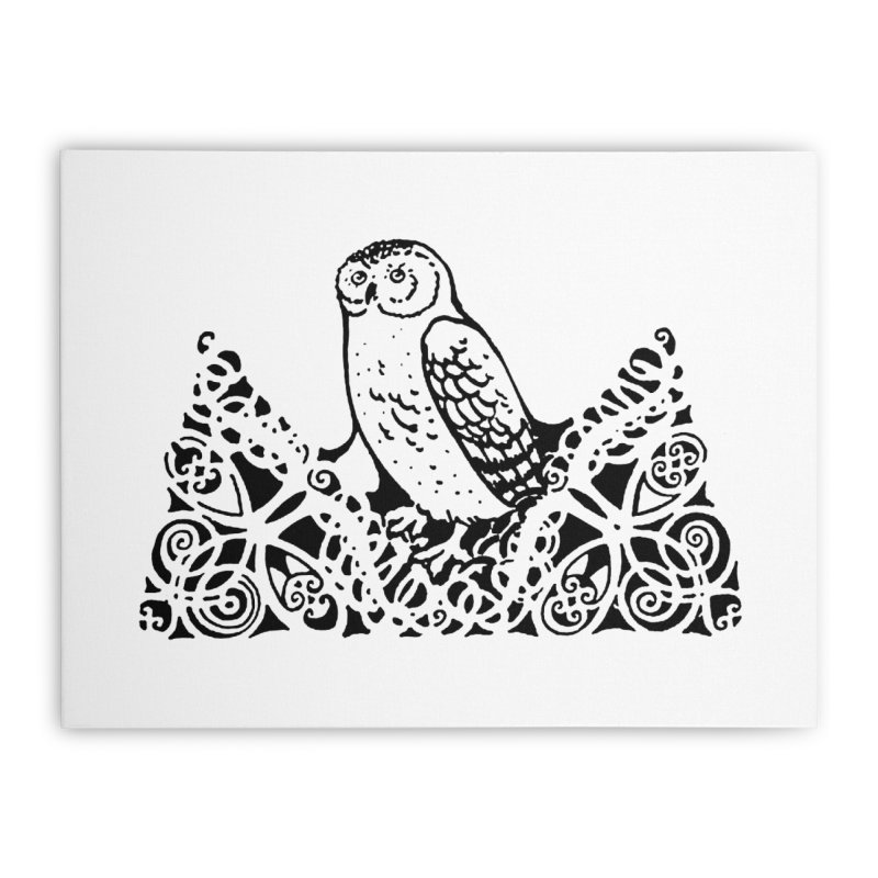 Tis Nothing but a Little Downy Owl Home Stretched Canvas by Green Grackle Studio