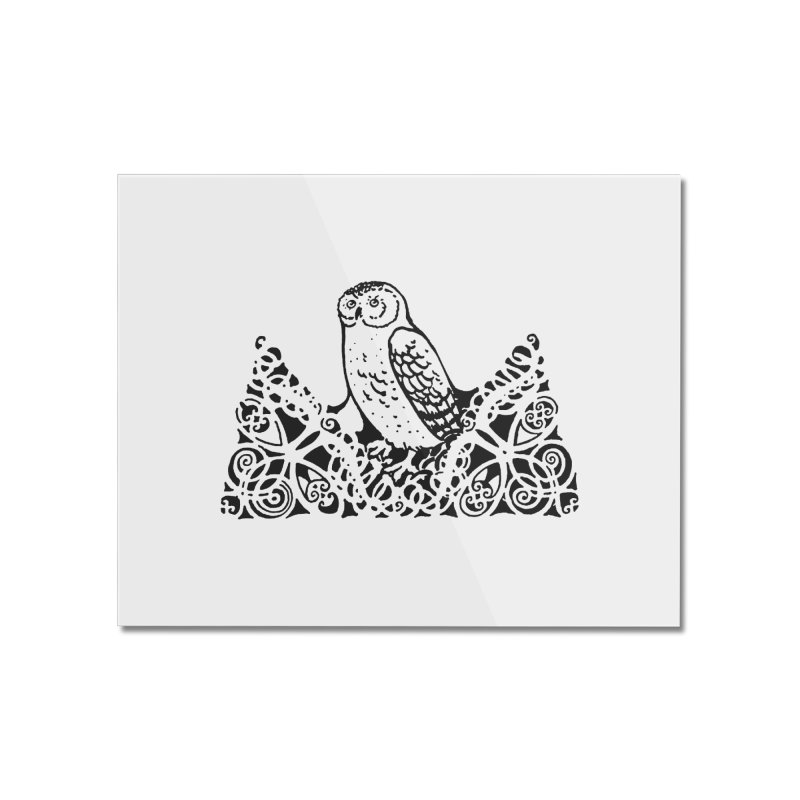 Tis Nothing but a Little Downy Owl Home Mounted Acrylic Print by Green Grackle Studio