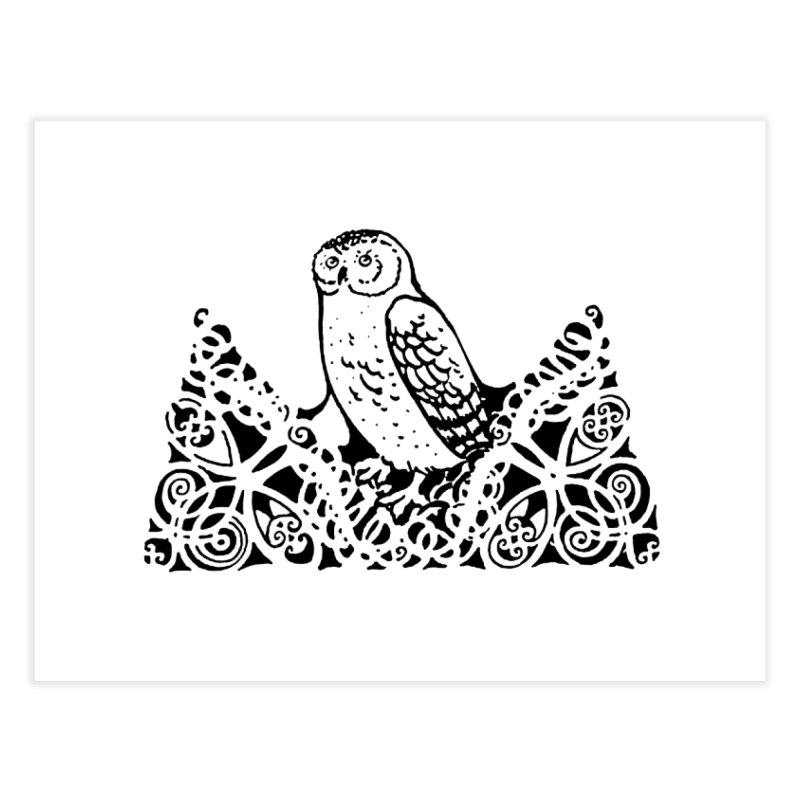 Tis Nothing but a Little Downy Owl Home Fine Art Print by Green Grackle Studio