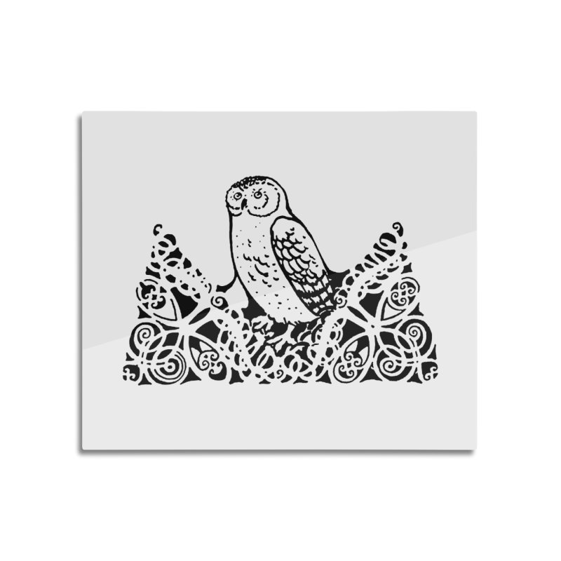 Tis Nothing but a Little Downy Owl Home Mounted Aluminum Print by Green Grackle Studio