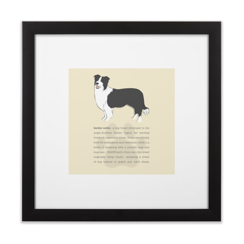 Border Collie 1 Home Framed Fine Art Print by grumpyteds's Artist Shop