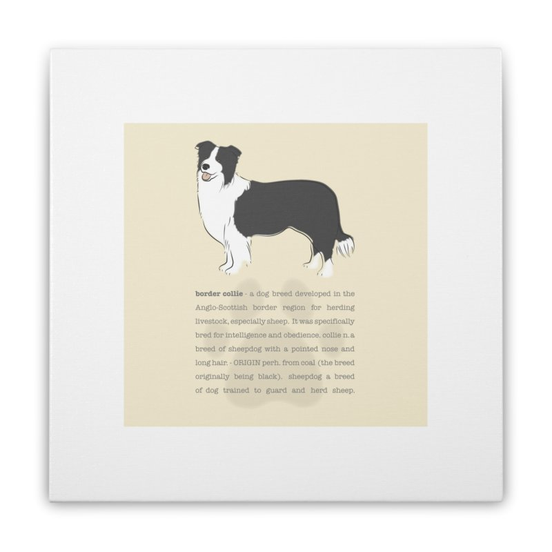 Border Collie 1 Home Stretched Canvas by grumpyteds's Artist Shop