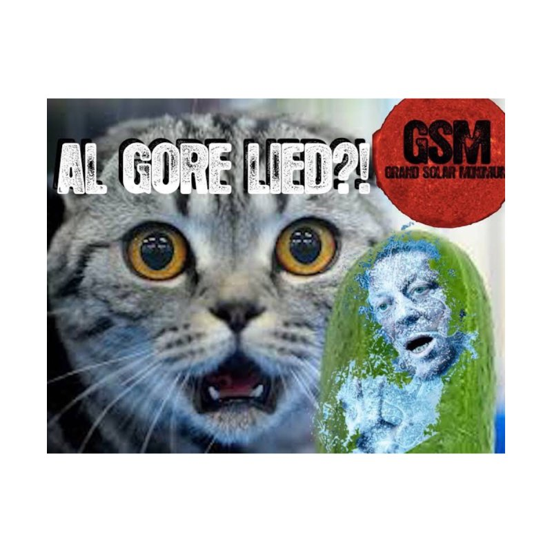 GORE Lied! Cool Cat -GSM- Global Cooling cats by Supporting The Grand Solar Minimum