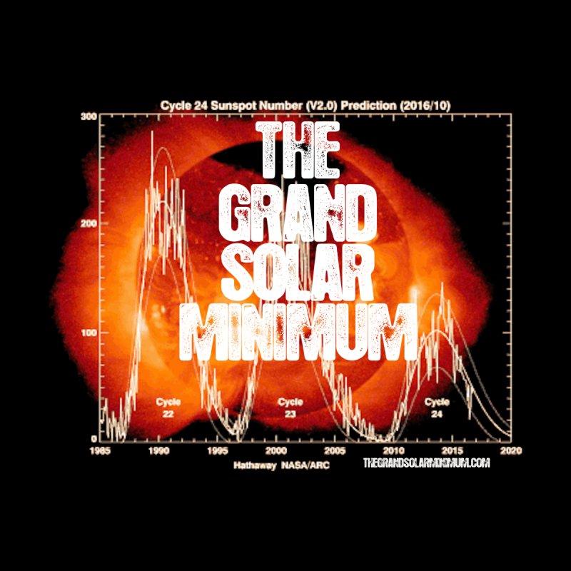Solar Cycles Grand Solar Minimum by Supporting The Grand Solar Minimum