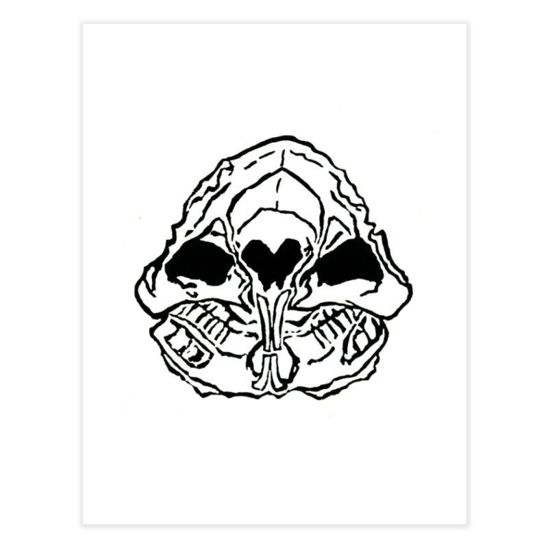 Guinea Pig Skull | Guinea Pigs and Books