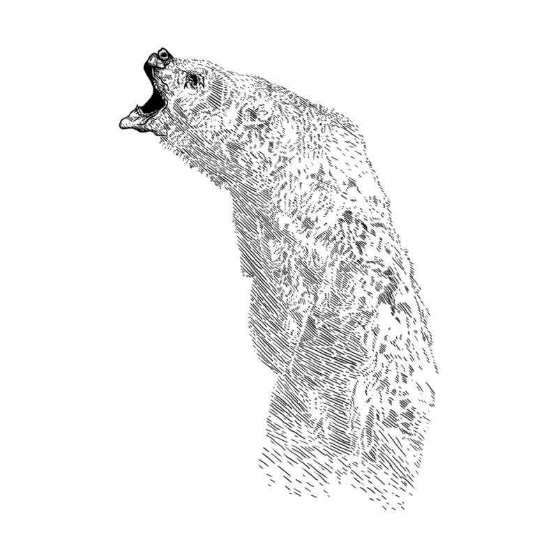 bearoar by gupikus's Artist Shop