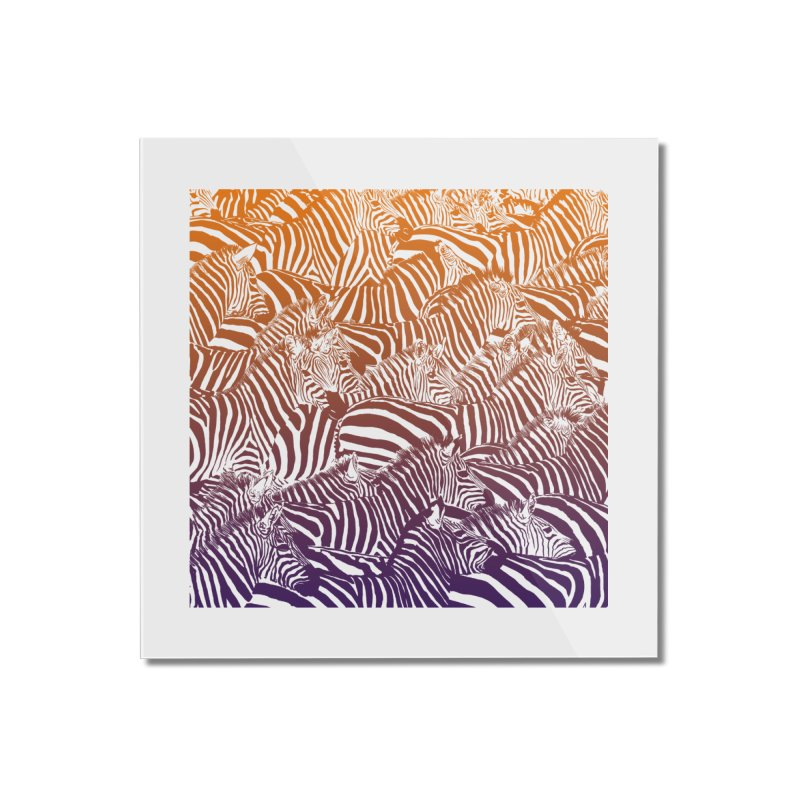 zebras Home Mounted Acrylic Print by gupikus's Artist Shop