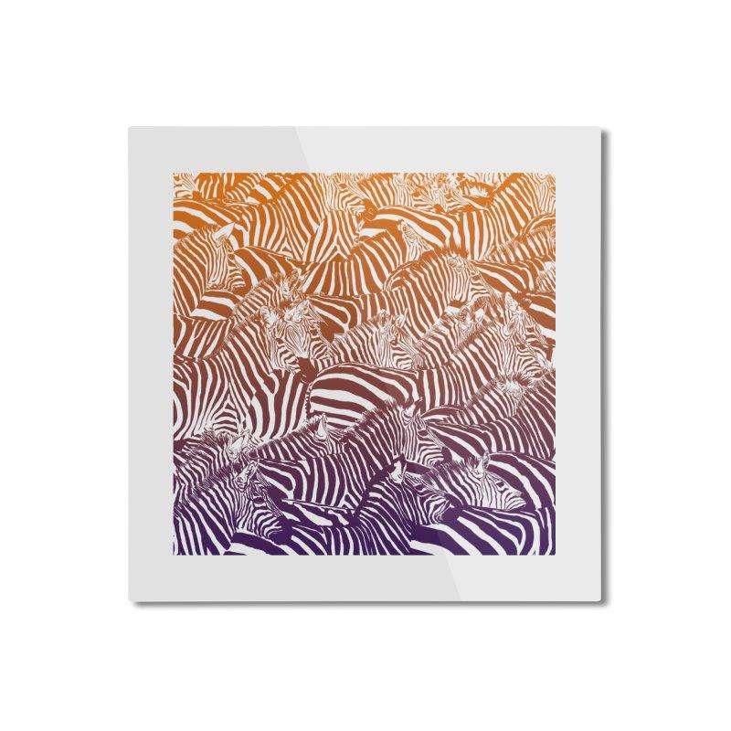 zebras Home Mounted Aluminum Print by gupikus's Artist Shop