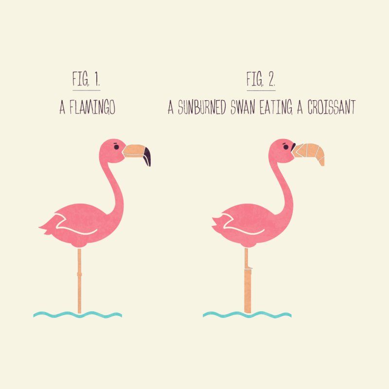 Know Your Birds - Flamingo Home Rug by handsoffmydinosaur