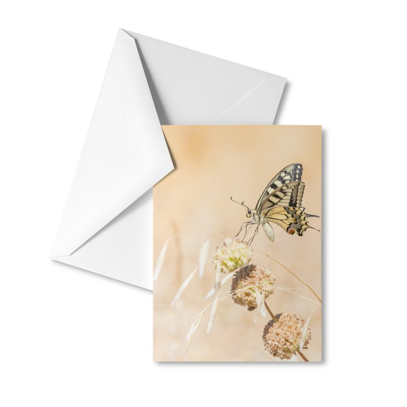 Fragile beauty of swallowtail butterfly Accessories Greeting Card by heilimo's Artist Shop
