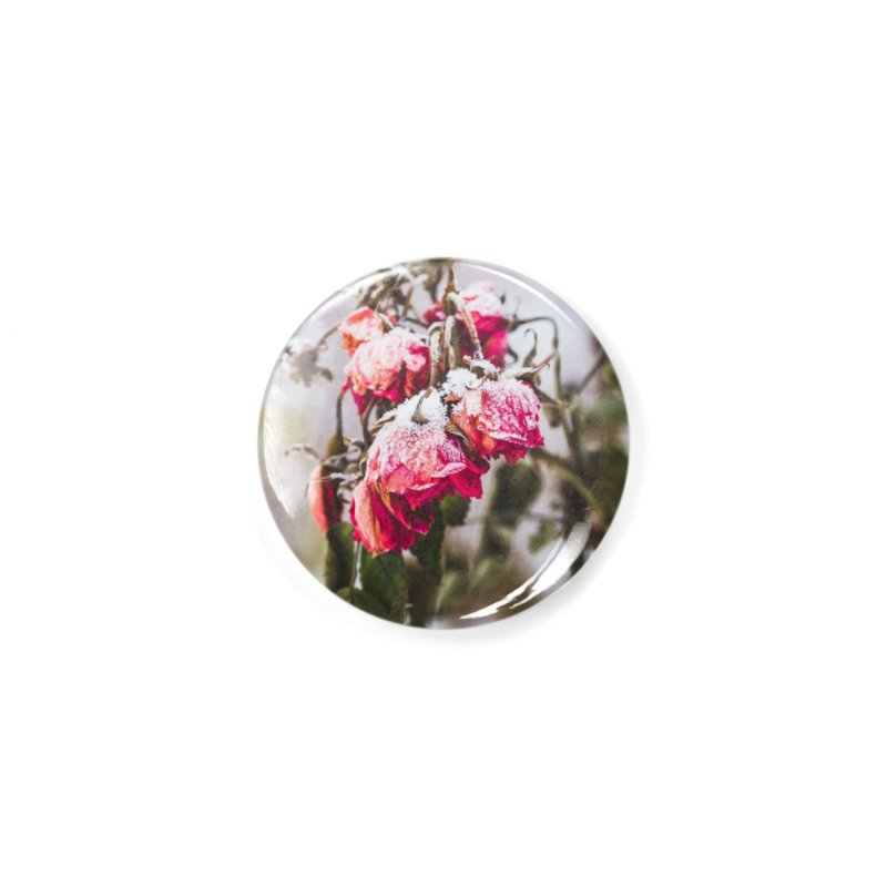 Frozen red roses Accessories Button by heilimo's Artist Shop