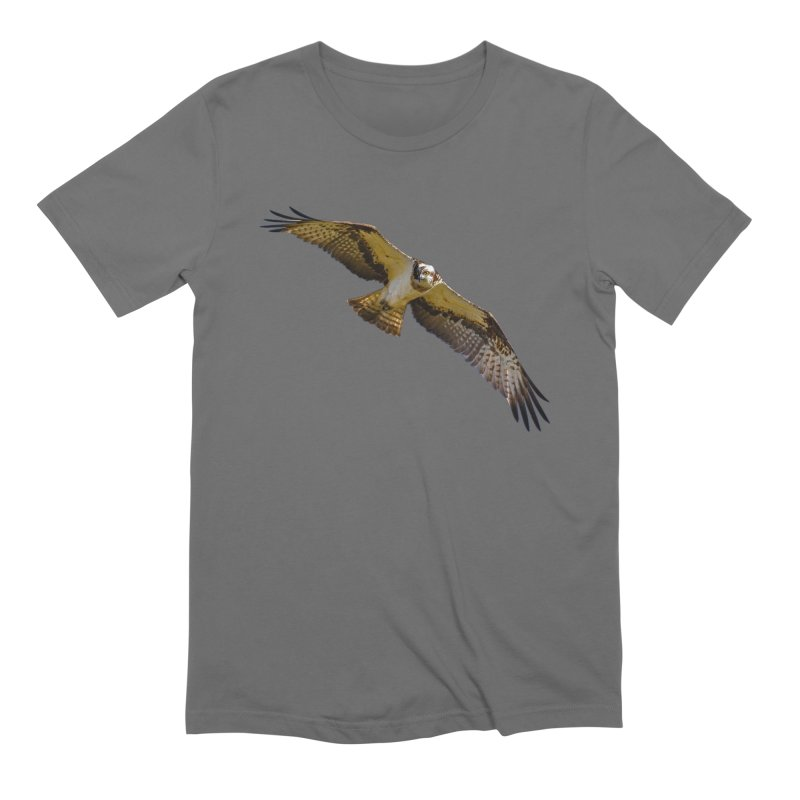 Flying osprey with a target in sight (cutout with blue background) Men's T-Shirt by heilimo's Artist Shop