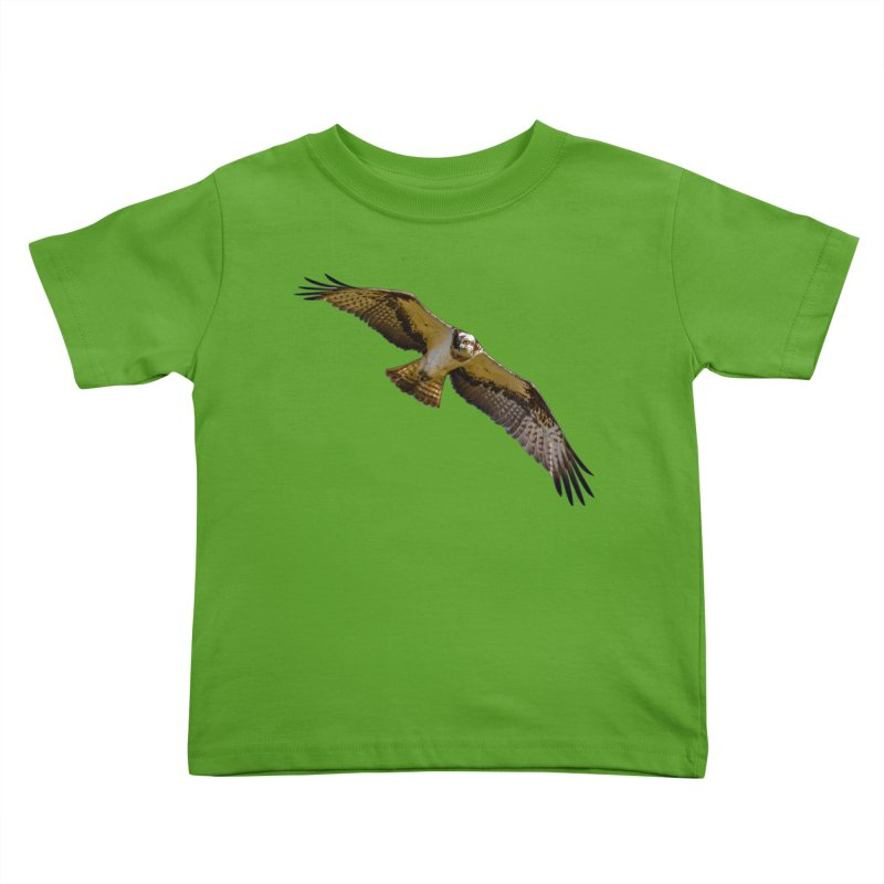 Flying osprey with a target in sight (cutout with blue background) Kids Toddler T-Shirt by heilimo's Artist Shop